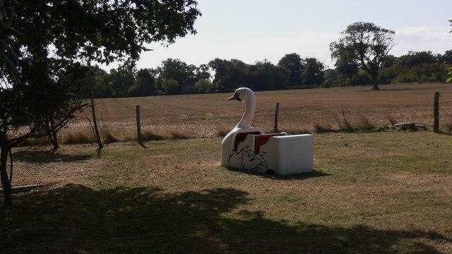 Swan at Maypole PH