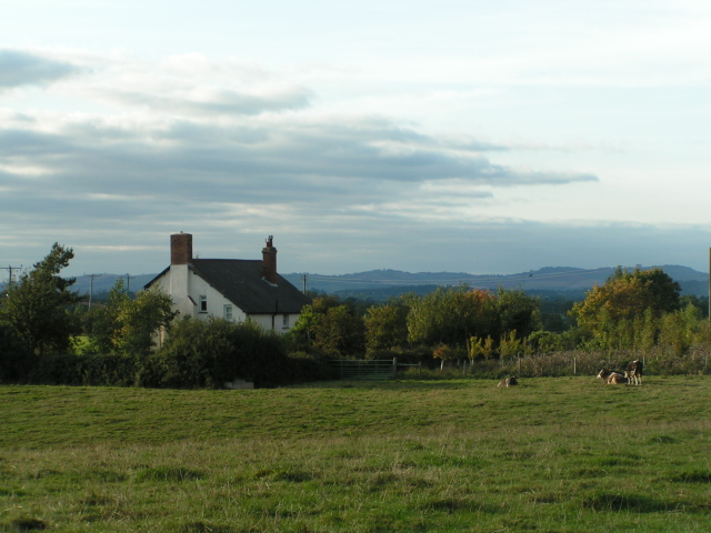 Cottage south of Rockbeare in the evening sun