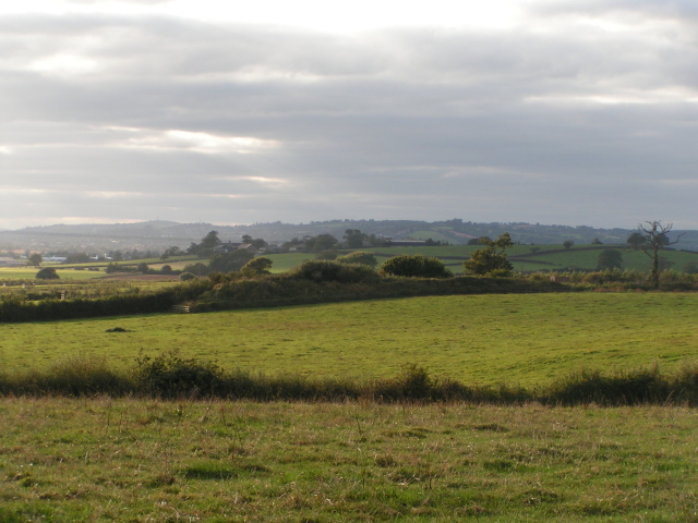 Fields between Rockbeare and Exeter Airport, looking west