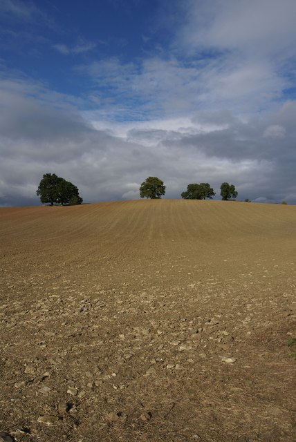 Ploughed & harrowed