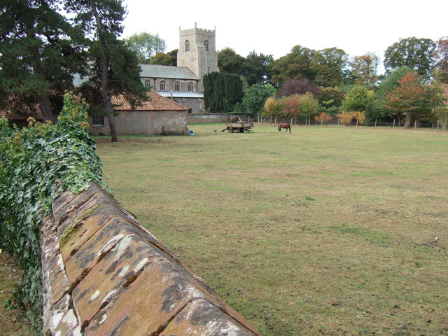 Paddock near the church, Dersingham