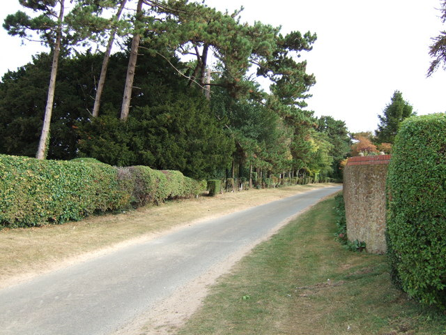 Mill Road near Dersingham