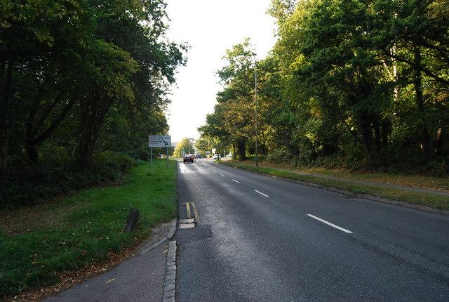 Major York's Rd