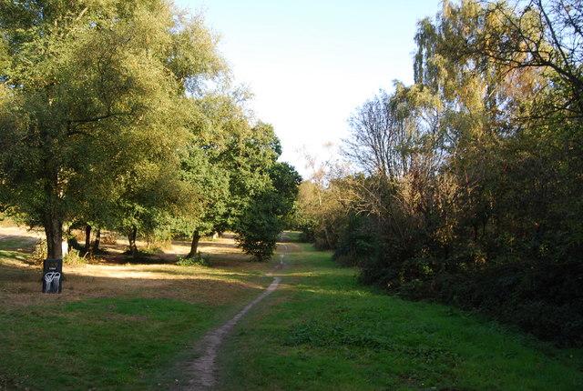 Footpath across Tunbridge Wells Common