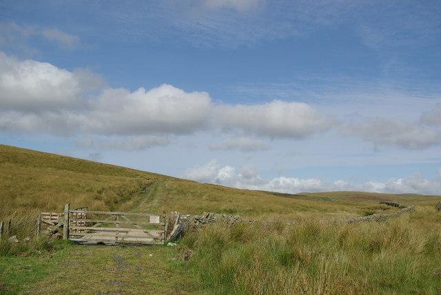 Track crossing the Davenholme Burn
