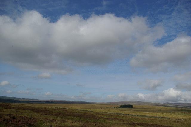 Moorland NW of Slickconerie