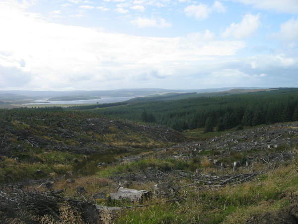 Clear fell and a view of Kielder Water