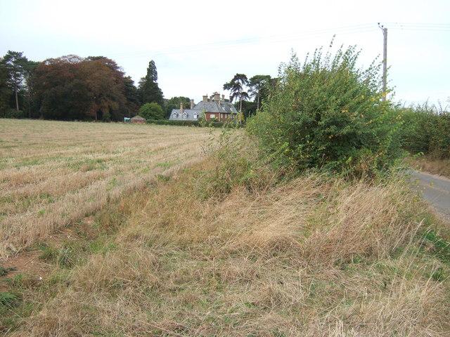Stubble and hedge, Ingoldisthorpe