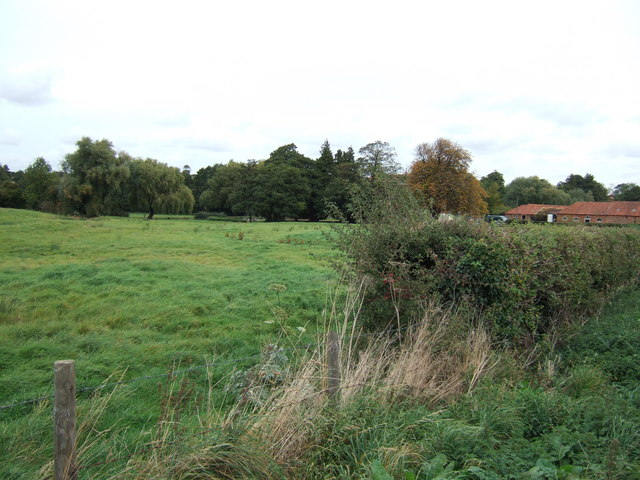 Pasture near Shernborne Hall