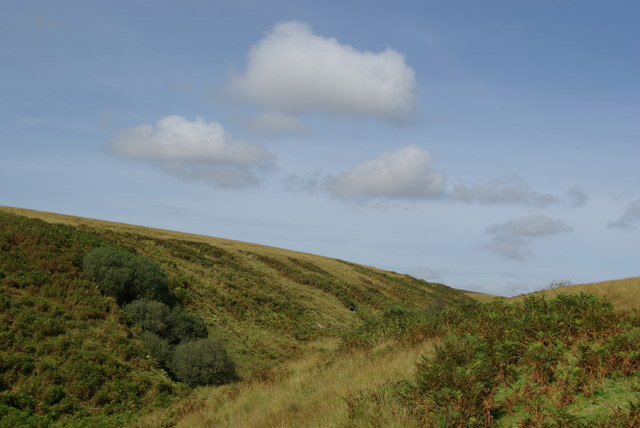 Tongue Glen