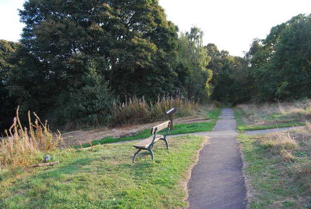 Bench by a footpath on the edge of Tunbridge Wells Common