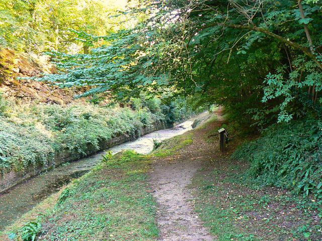 Thames and Severn Canal, near Tarlton
