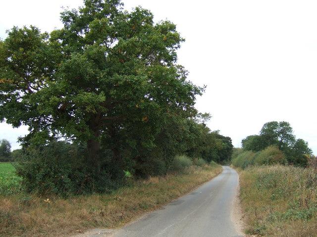 Fring Road east of Snettisham