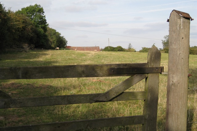 Roof, Stanks Farm near Hampton Magna village