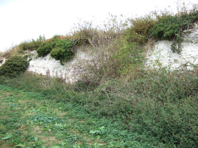 Abandoned chalk quarry near Snettisham