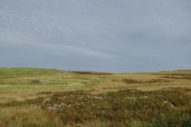Sheepfold on western slopes of Craigbirnoch Fell