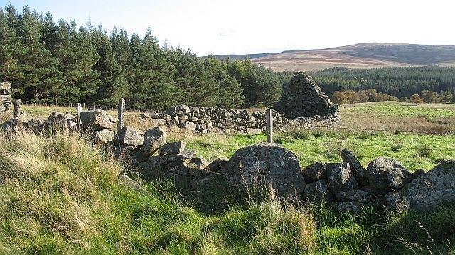 Ruin, Drumour