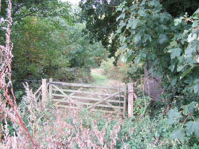 Gate into the woods, Snettisham