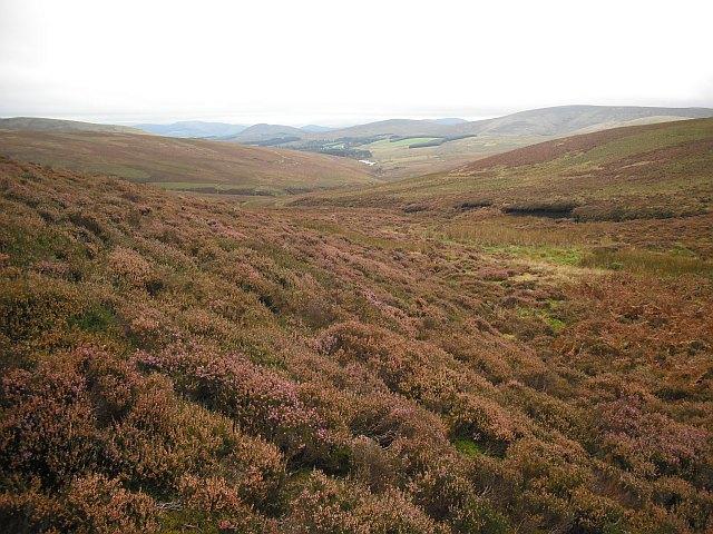Moorland below Wether Law