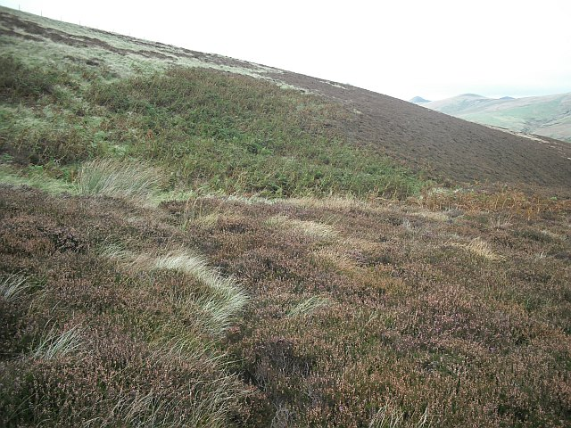 Moorland, Wether Law