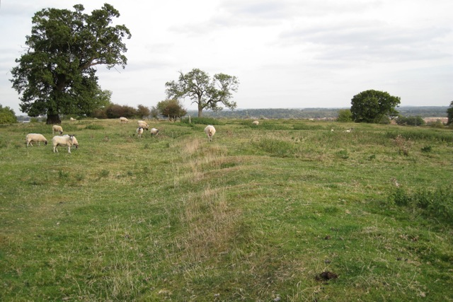 Uneven ground west of Hampton on the Hill