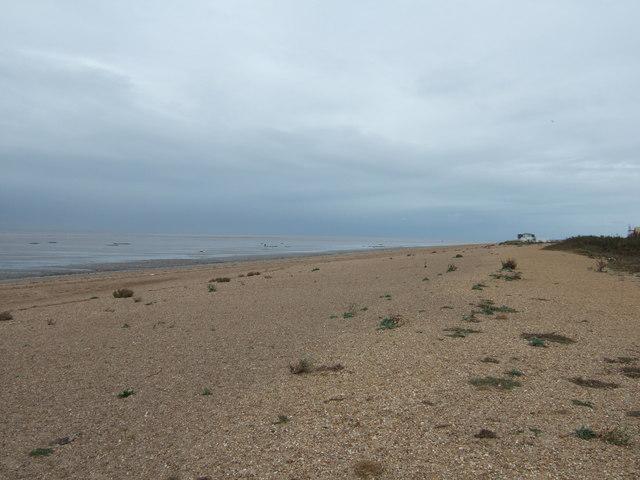 Snettisham beach looking north