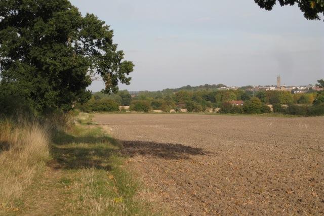 Long Meadow, south of Hampton Magna