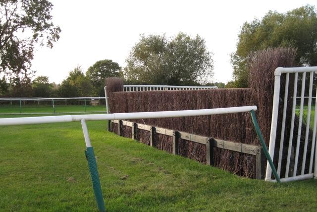 Jump, Warwick racecourse