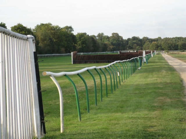 Jumps, back straight, Warwick racecourse