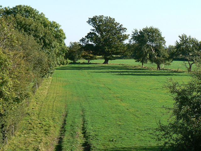 Field, Spine Road, near South Cerney