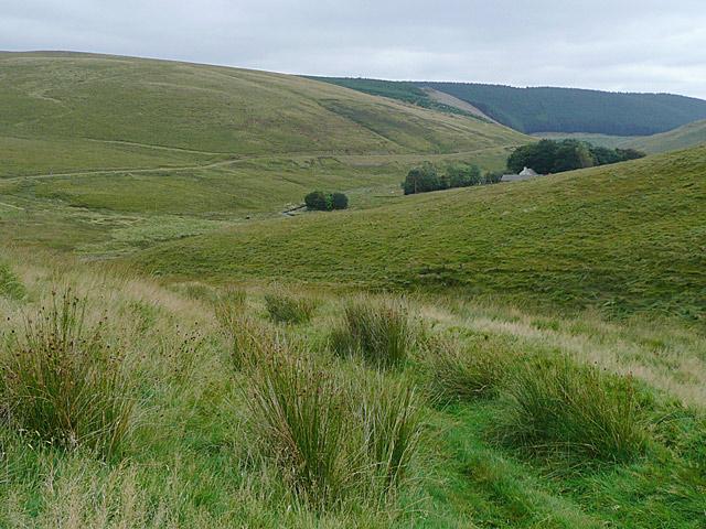 Across the Camddwr Valley near Maesglas farm, Ceredigion