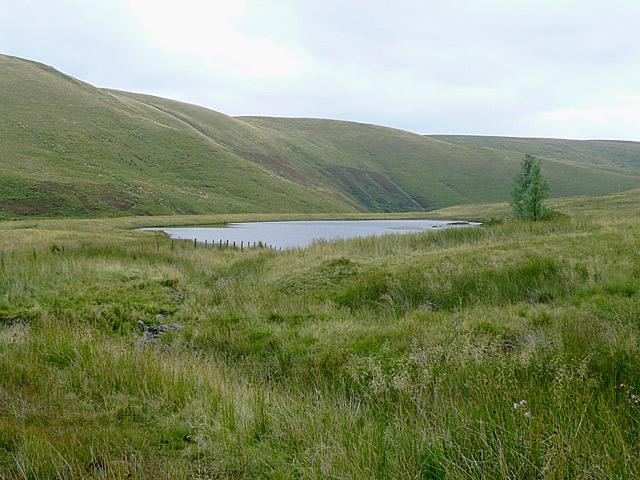 Cwm Camddwr south-east of Nantymaen, Ceredigion
