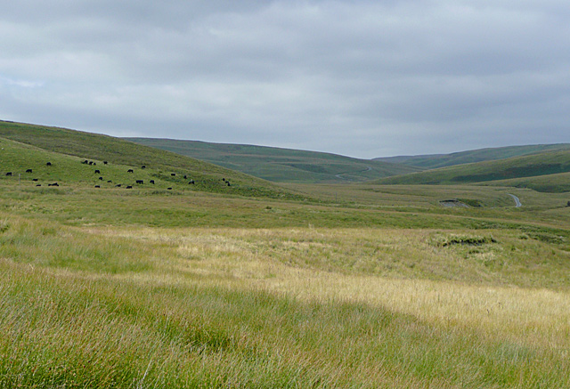 Elenydd moorland and the Camddwr Valley, Ceredigion