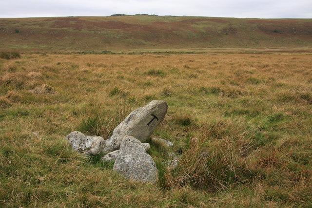 Taw Marsh Boundary Stone