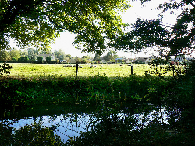 Mill stream, Bow Wow, South Cerney