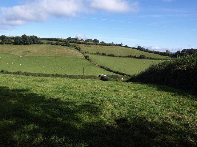 Fields by Grant's Lane