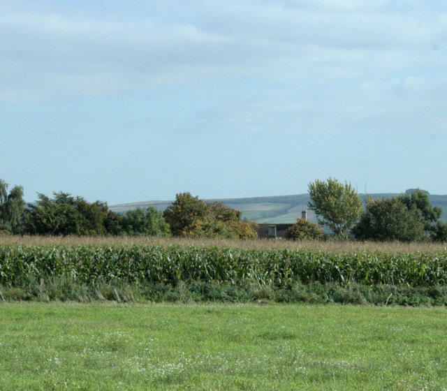 2009 : House across the maize