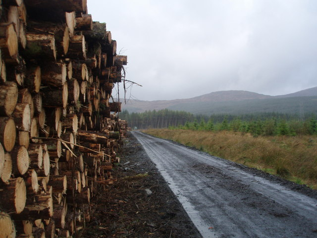 Timber stack on the Southern Upland Way