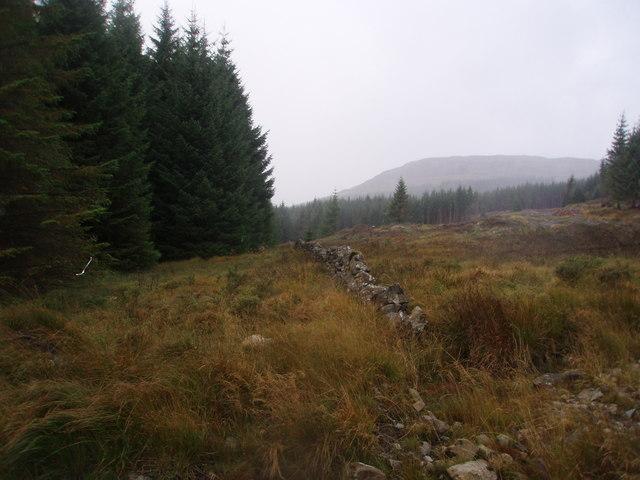Drystane dyke near Dernscloy