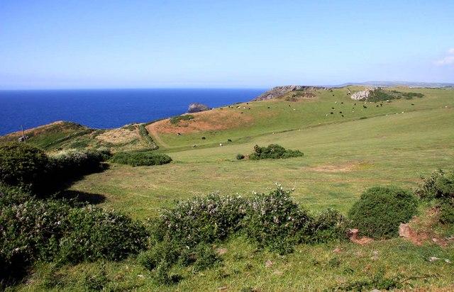 Looking across fields towards Gullastem