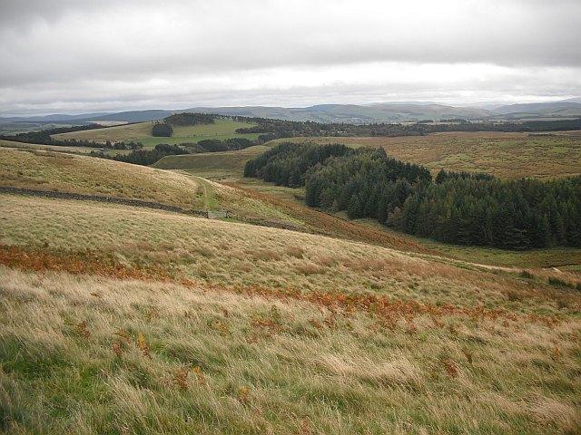Tocher Knowe - Badinsgill track