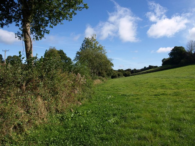 Field near Heathstock Farm