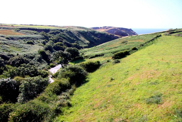 Wooded valley by Tintagel Castle