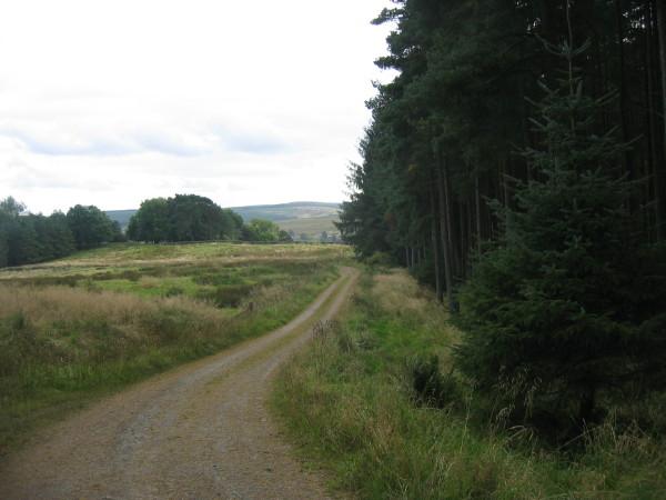 Track towards Falstone