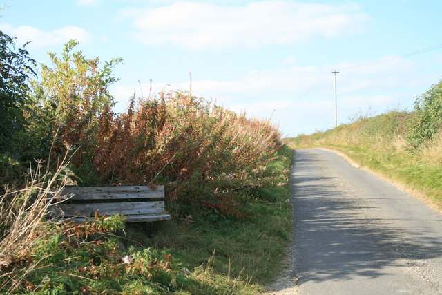Bench beside the road