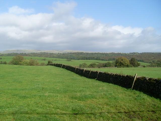 Stone wall between fields north of Milngavie