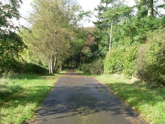 Carneddans Road