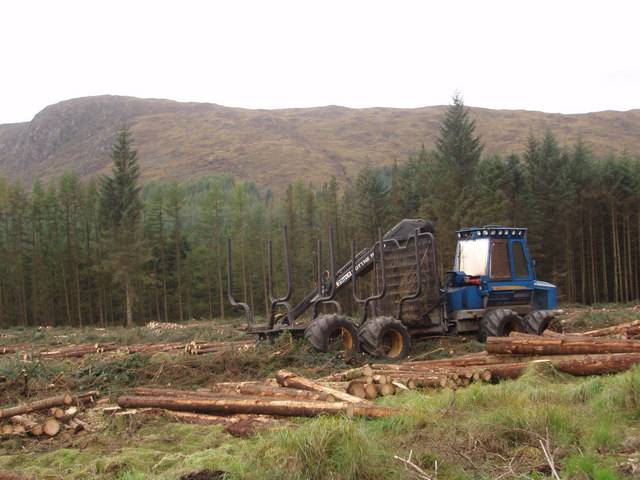 Rottne Forwarder in Clatteringshaws Forest