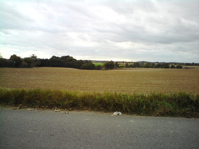 Farmland between Culpho and Playford