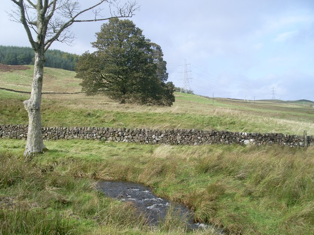 Burn south of Carneddans Woods